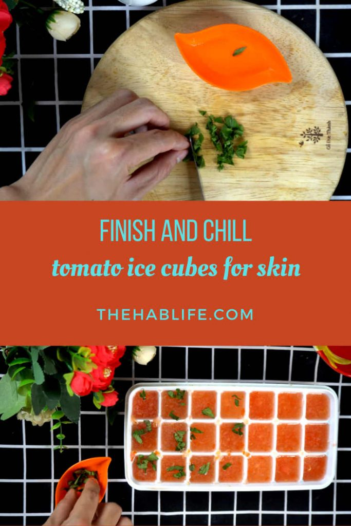 How to make tomato ice cubes