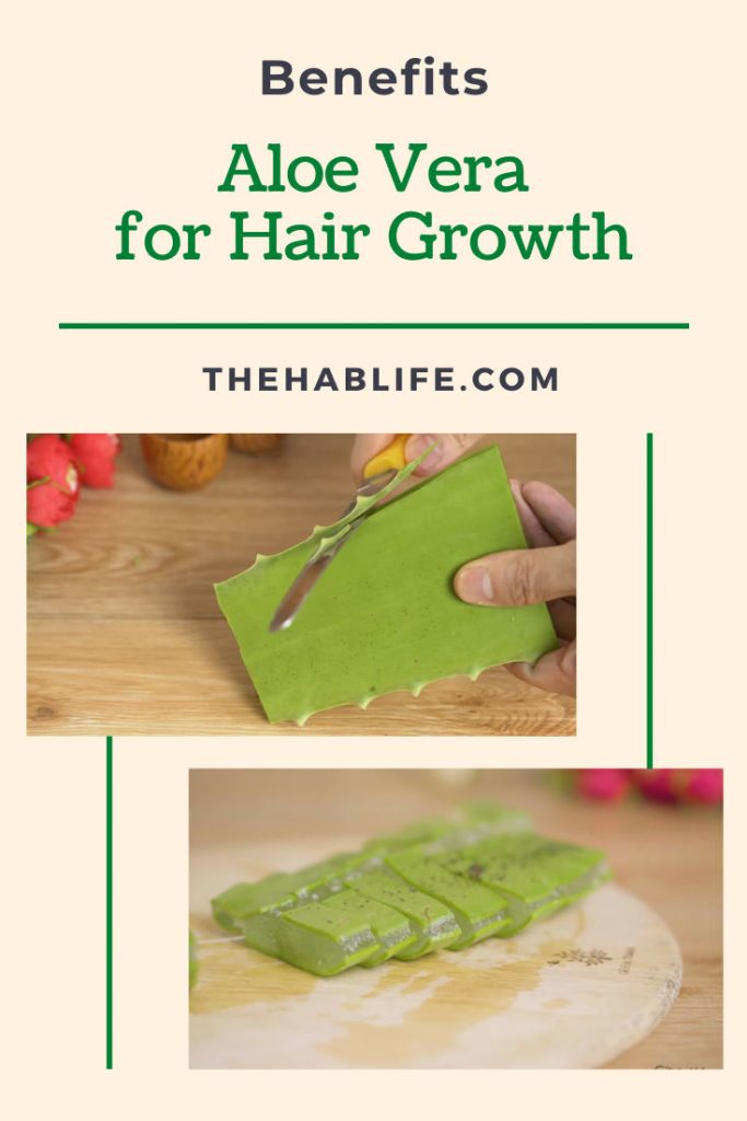 why should we use aloe vera for hair?