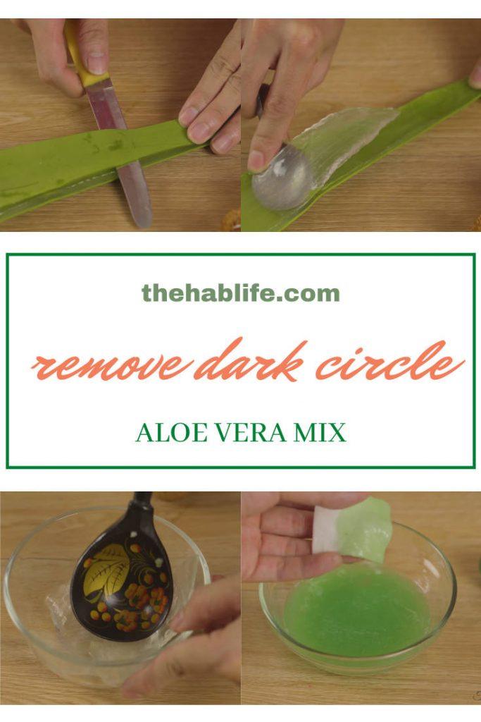 prepare aloe vera & mix