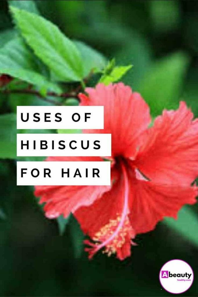 Hibiscus to Promote Hair Growth